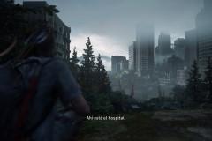 The Last of Us™ Parte II_20200630162233