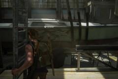 The Last of Us™ Parte II_20200705174728