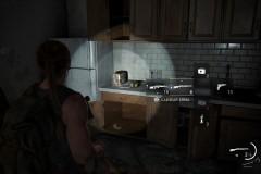 The Last of Us™ Parte II_20200705194814