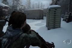 The Last of Us™ Parte II_20200620005417